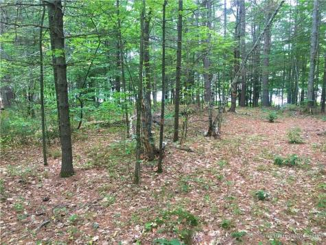 Lot 5 Onamor Drive Newfield ME 04095