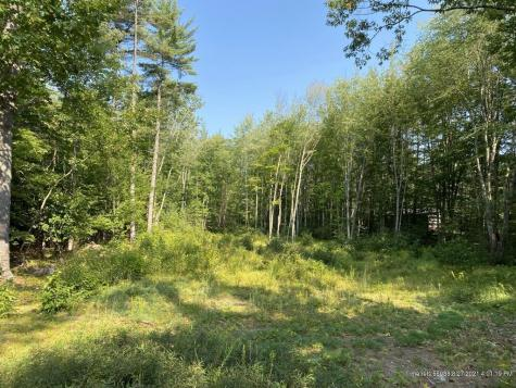 Lot 7 Province Lake Road Parsonsfield ME 04047