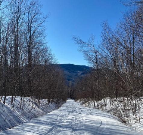Lot 4 Bear River Rd, Puzzle Mountain Newry ME 04261