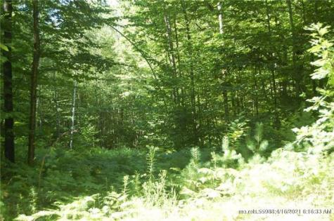 LOT 2 Beaver Brook Estate Rome ME 04963