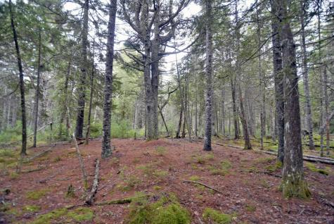 Lot 1 Driftwood Way Mount Desert ME 04660