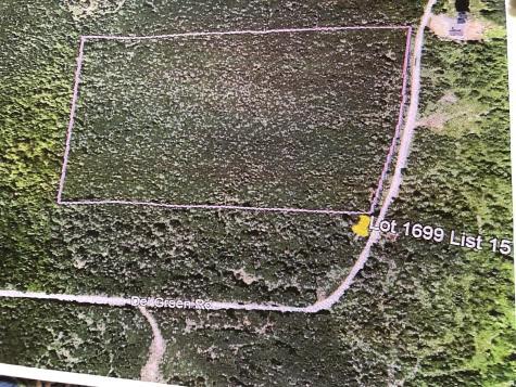 Lot1699 Spruce Pond Road Lexington Twp ME 04961