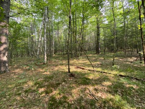 Lot 25 Owls Nest Road Shapleigh ME 04076