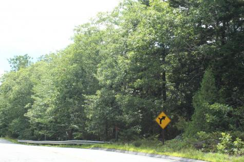 00 Mines Road Blue Hill ME 04614