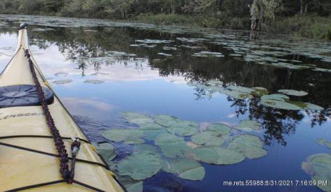 Bog Road Hampden ME 04444