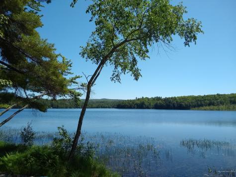 93 Pease Pond Road Wilton ME 04294
