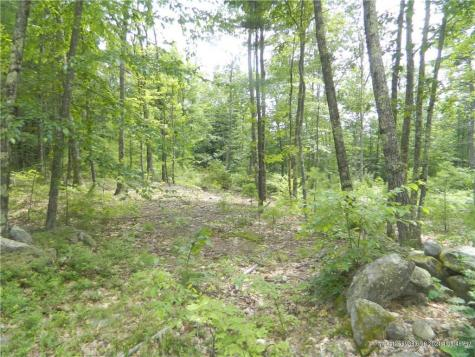 Lot 16-8 Avery Road Waterboro ME 04087