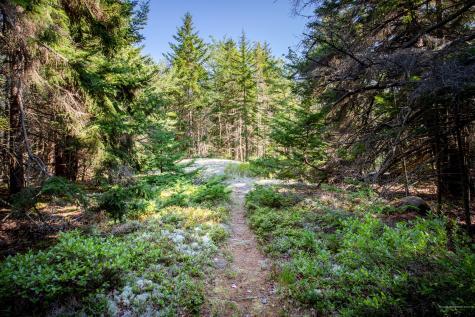 Lot 8 Rock Garden Way Mount Desert ME 04675