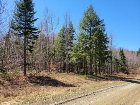 Lot 9 Bear Mountain Way Swanville ME 04915