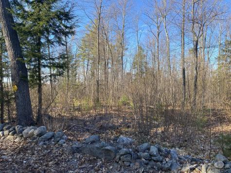 67acres Deering Ridge Road Waterboro ME 04030