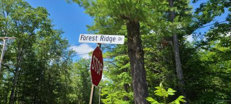 55 Forest Ridge Drive Naples ME 04055