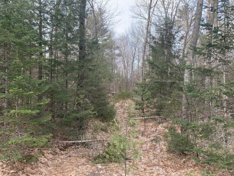 Lot 6 Hickory Drive Woodstock ME 04219
