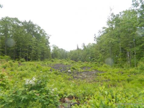 Lot 16-14A Avery Road Waterboro ME 04087