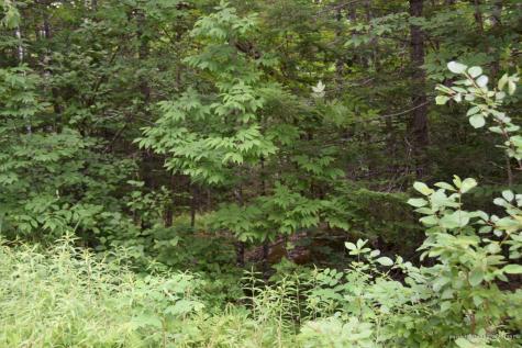 PO MSo081 L1-37 Fletcher Mountain Road Concord Twp ME 04920