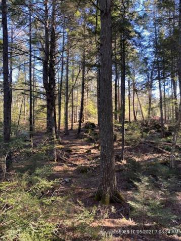 Lot #4 Sunset Cove Way Orland ME 04472