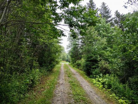 1650 Castine Road Penobscot ME 04476