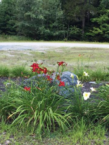Lot 9 Surry by the Bay Lane Surry ME 04684