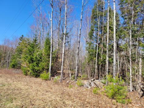 Lot 6 Bear Mountain Way Swanville ME 04915