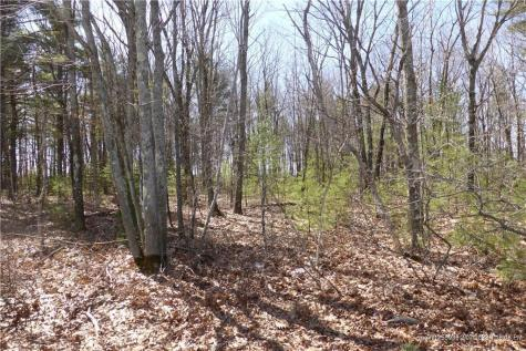 Lot 1C Main Street/Rte 109 Sanford ME 04073