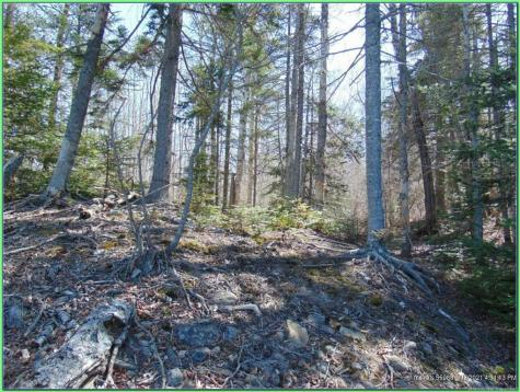 Lot 10-3 Rogers Point Rd Steuben ME 04680