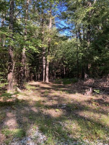 49 Forrest Edwards Road Road Otisfield ME 04270