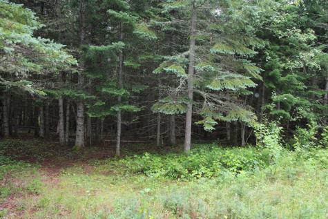 Lot 66-7 Deer Meadow Rangeley ME 04970