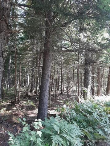 6a Pine Road New Portland ME 04961
