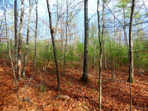 Lot 2 New Dam Road Waterboro ME 04061