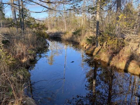 9-011 Pond Road Gouldsboro ME 04607
