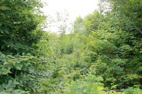 Beals Brook Road Livermore ME 04253