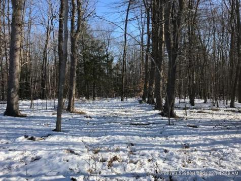 North Road Parsonsfield ME 04047