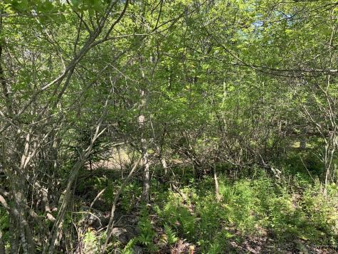 00 Quaco Road (Lily Pond Est #6) Deer Isle ME 04627